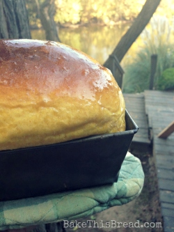 Baked and Butter Pumpkin Bread by the River Bake This Bread