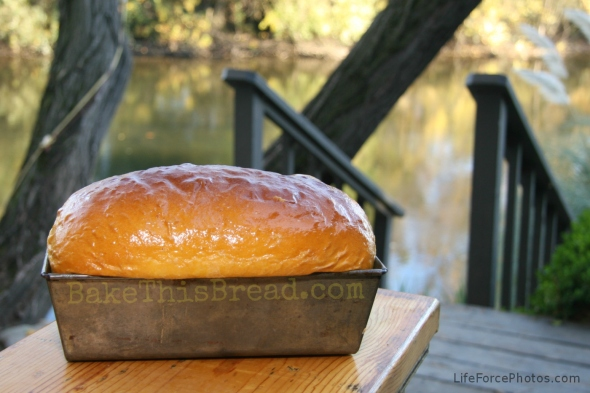 Pumpkin Bread Loaf by the river photo by LifeForcePhotos for Bake This Bread