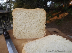 Sliced loaf of whole 6666666wheat country bread in garden by bake this bread