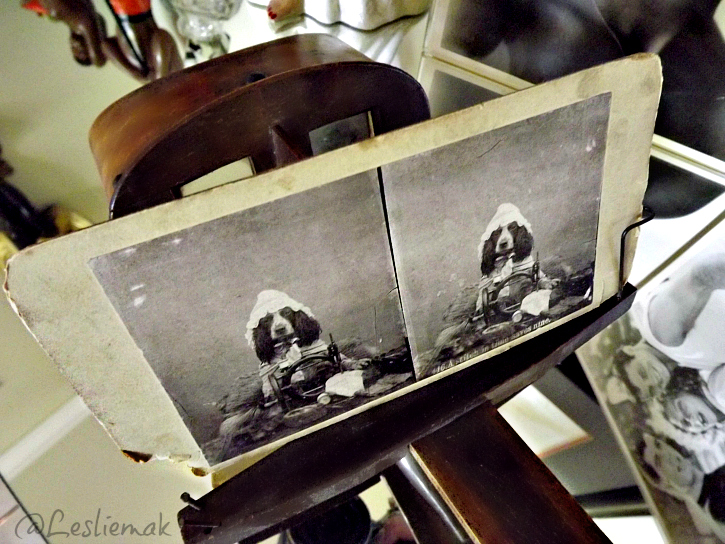 Steroscopic viewer with spaniel in a bonnet Sherman Oaks Antiques photo by Leslie Macchiarella