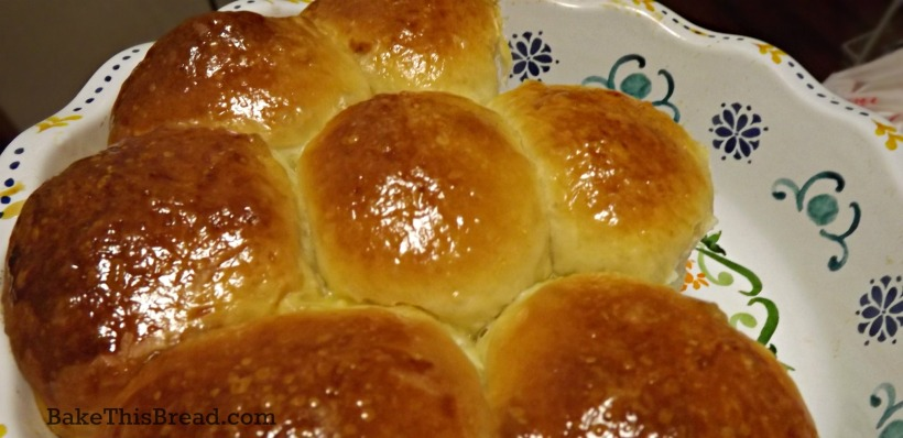 Serving hot yeasted buttermilk dinner rolls by bake this bread